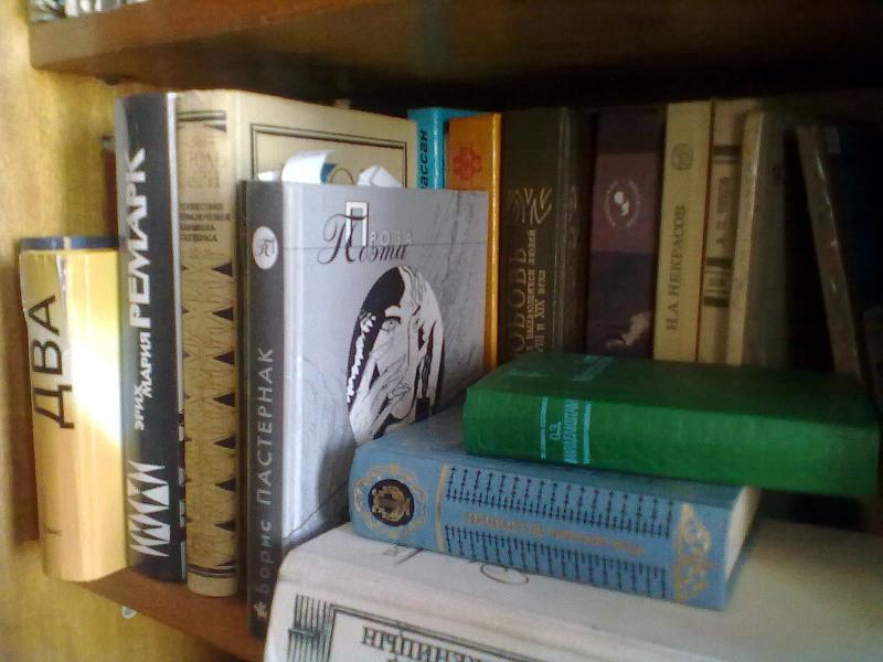 Специалисты СПбГУ обозначат траекторию чтения для россиян
